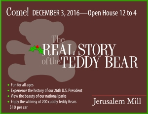 The Real Story of the Teddy Bear
